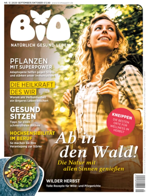 Cover: Ab in den Wald!