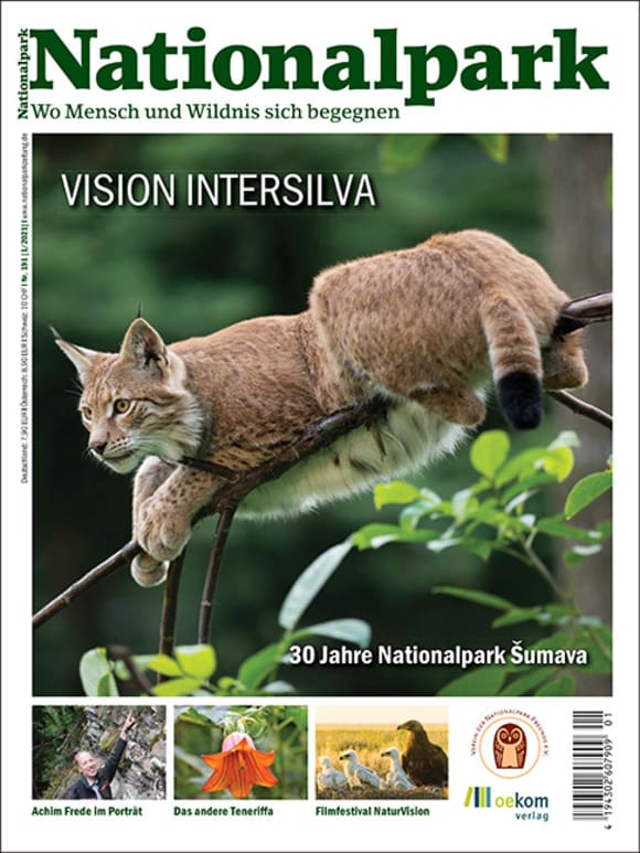 Cover: Vision Intersilva