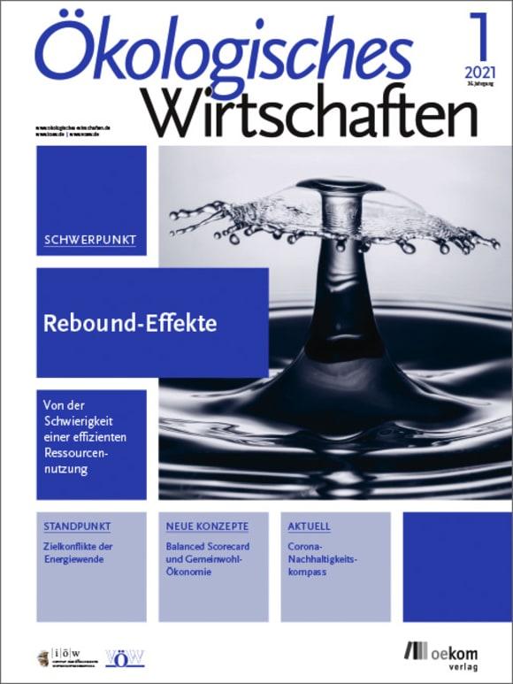 Cover: Rebound-Effekte