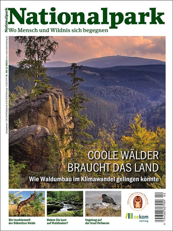 Cover: Coole Wälder braucht das Land