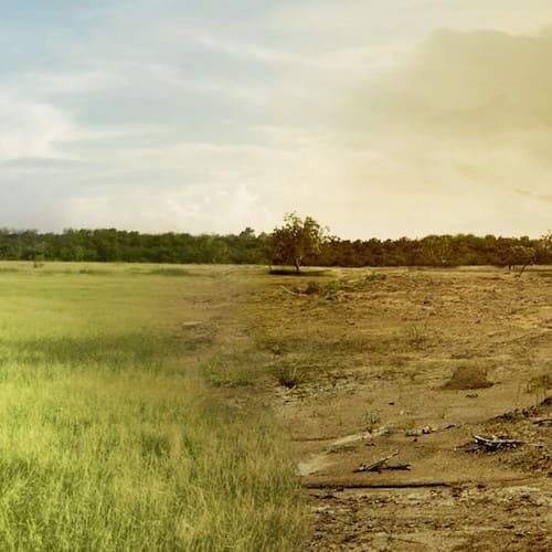 image Symbolbild für den Klimawandel