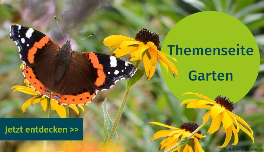 Publikationen und Artikel zum Thema Garten auf unserer Themenseite
