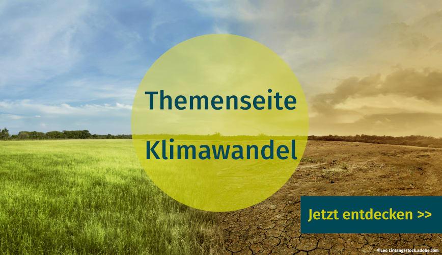 Publikationen und Artikel zum Thema Klimawandel auf unserer Themenseite