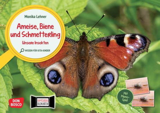 Ameise, Biene und Schmetterling. Unsere Insekten. Kamishibai Bildkarten und Memo-Spiel