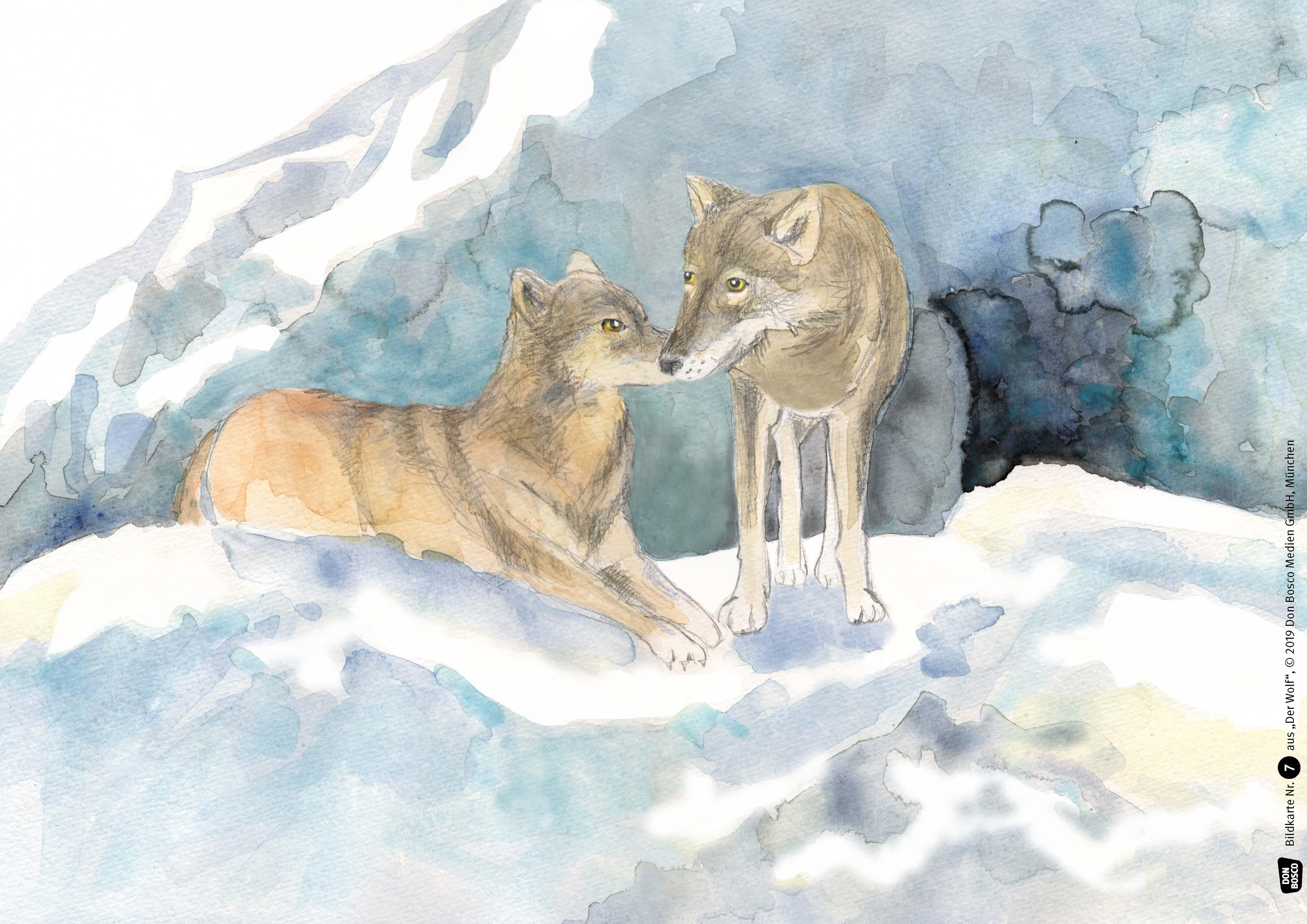 Innenansicht zu Der Wolf. eKami.