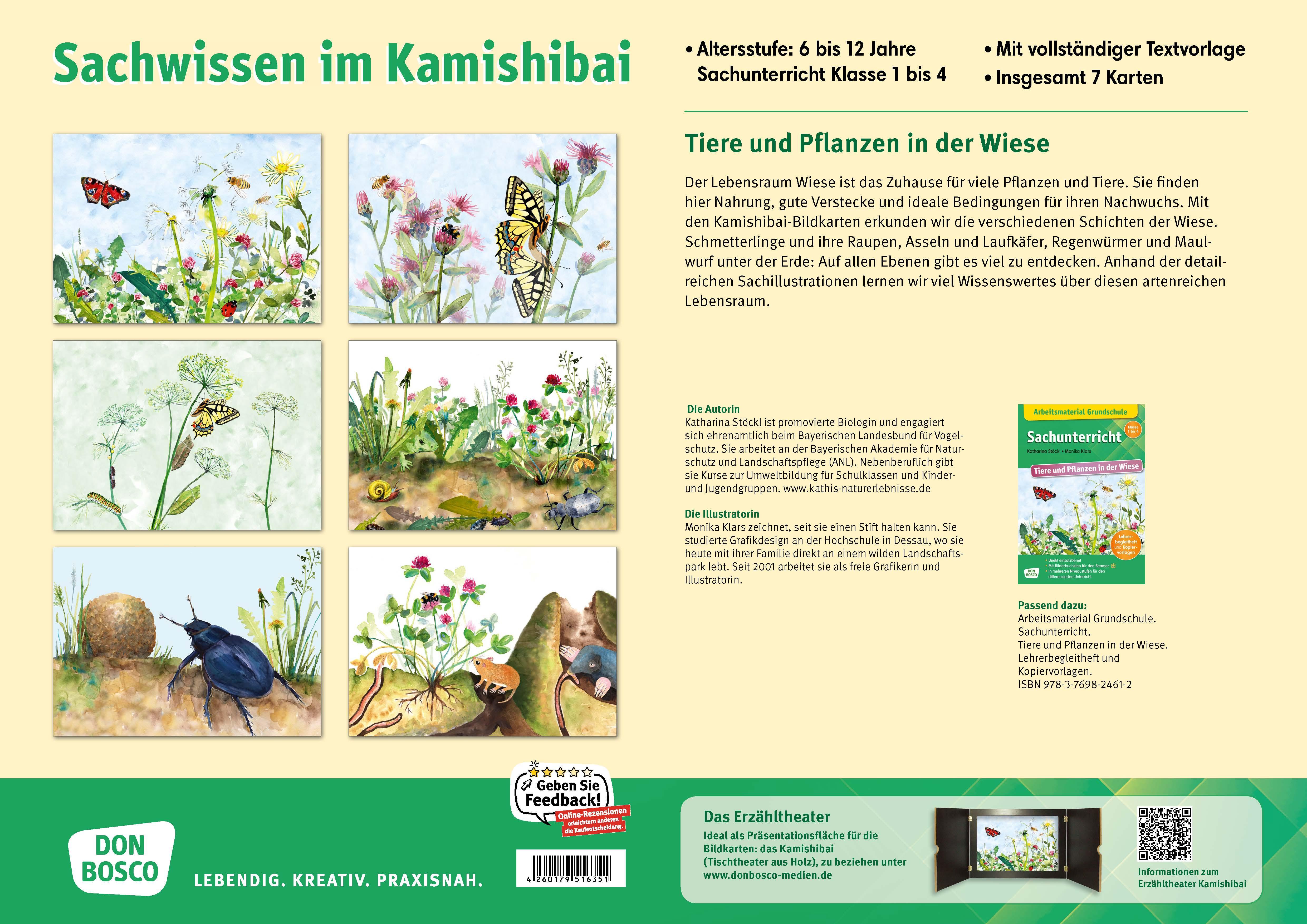 Innenansicht zu Tiere und Pflanzen in der Wiese. eKami.