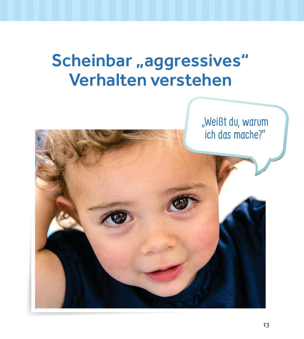 Innenansicht zu Hauen, schubsen, beißen – herausforderndes Verhalten von Kleinkindern in der Krippe begleiten