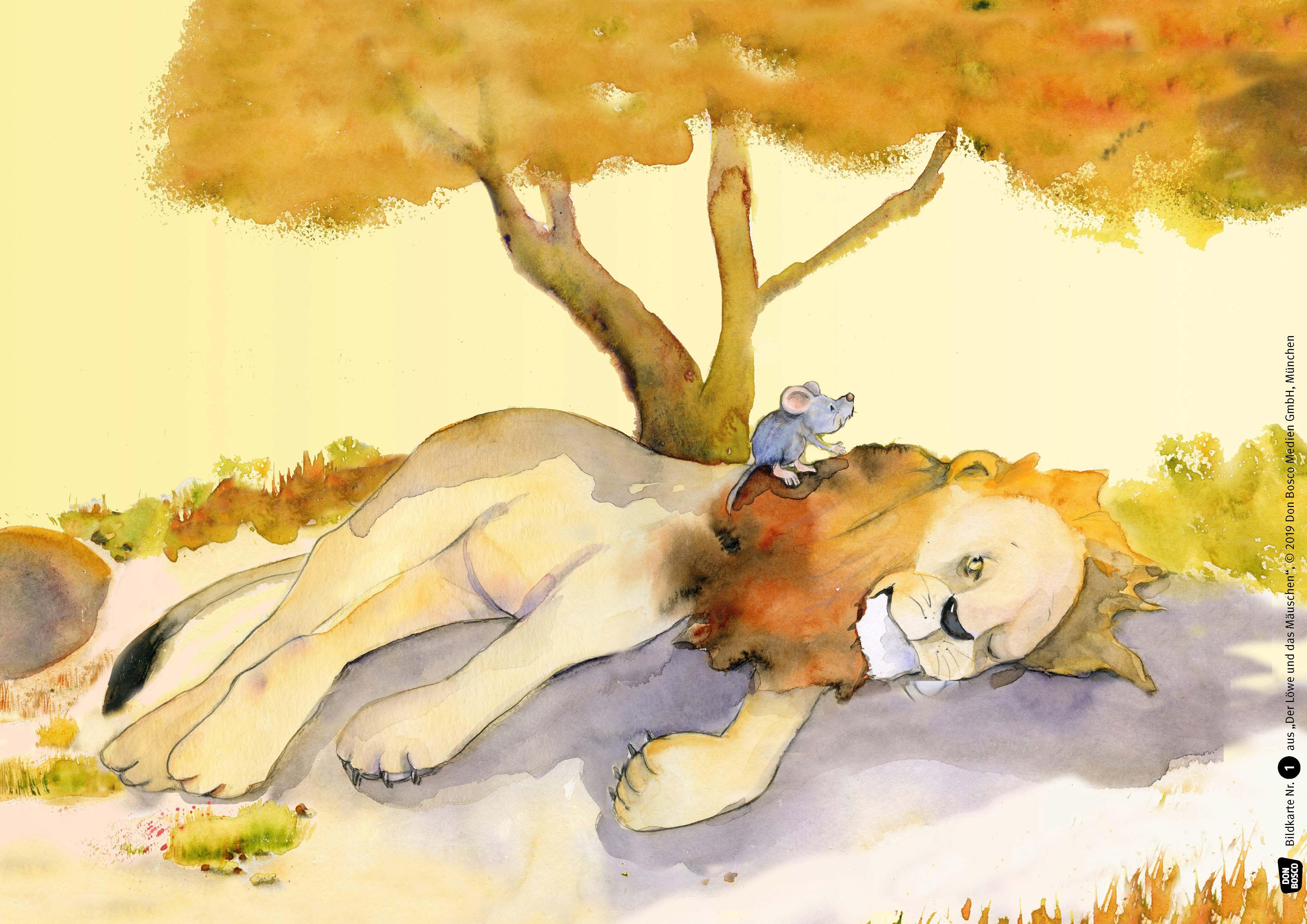 Innenansicht zu Der Löwe und das Mäuschen. Eine Fabel von Äsop. Kamishibai Bildkartenset.