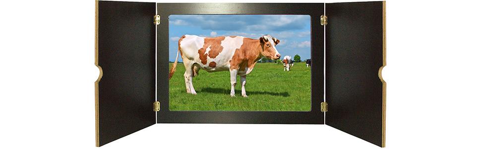 Innenansicht zu Huhn, Schwein und Kuh. Tiere auf dem Bauernhof. Kamishibai Bildkarten und Memospiel