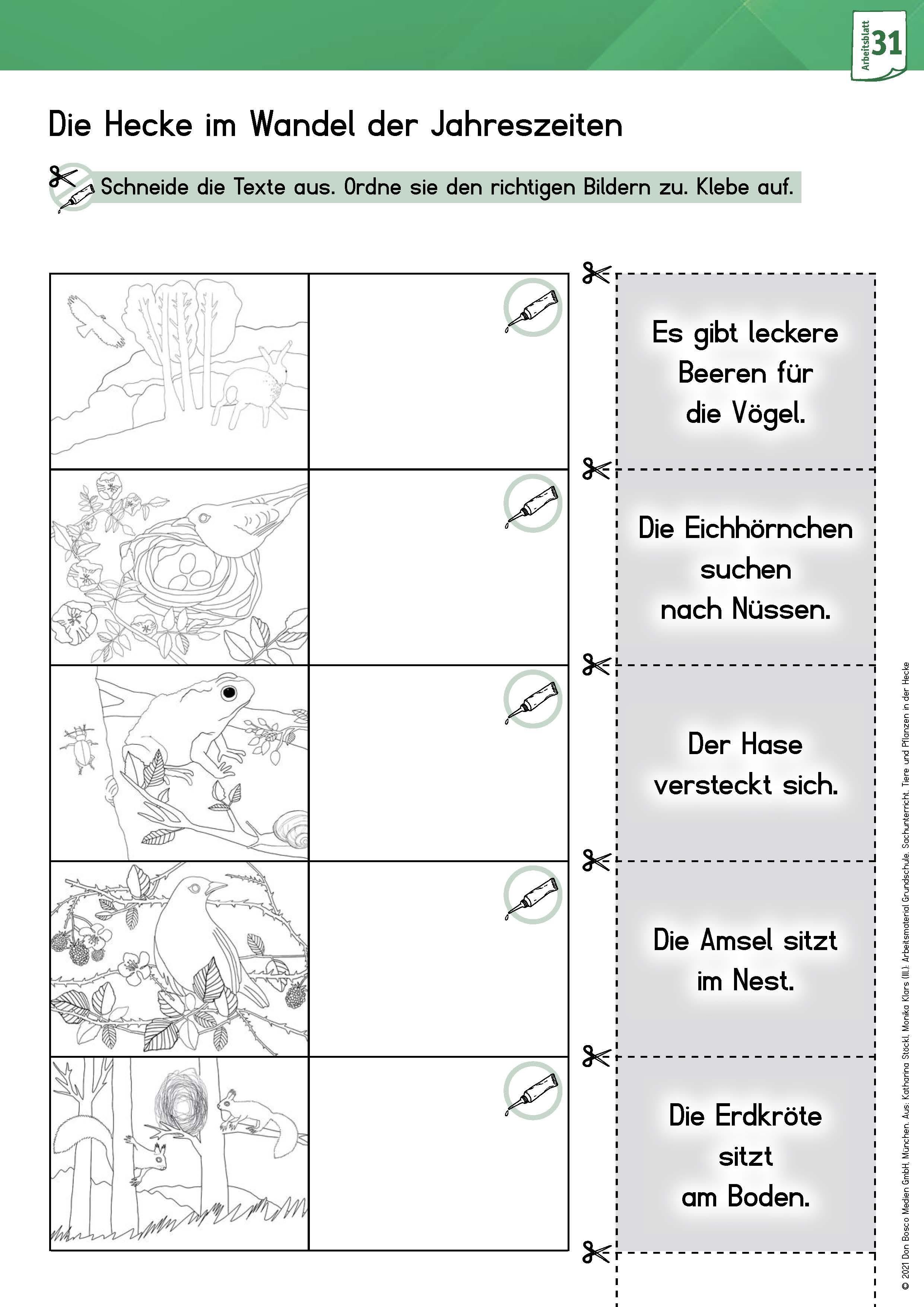 Innenansicht zu Arbeitsmaterial Grundschule. Sachunterricht. Tiere und Pflanzen in der Hecke
