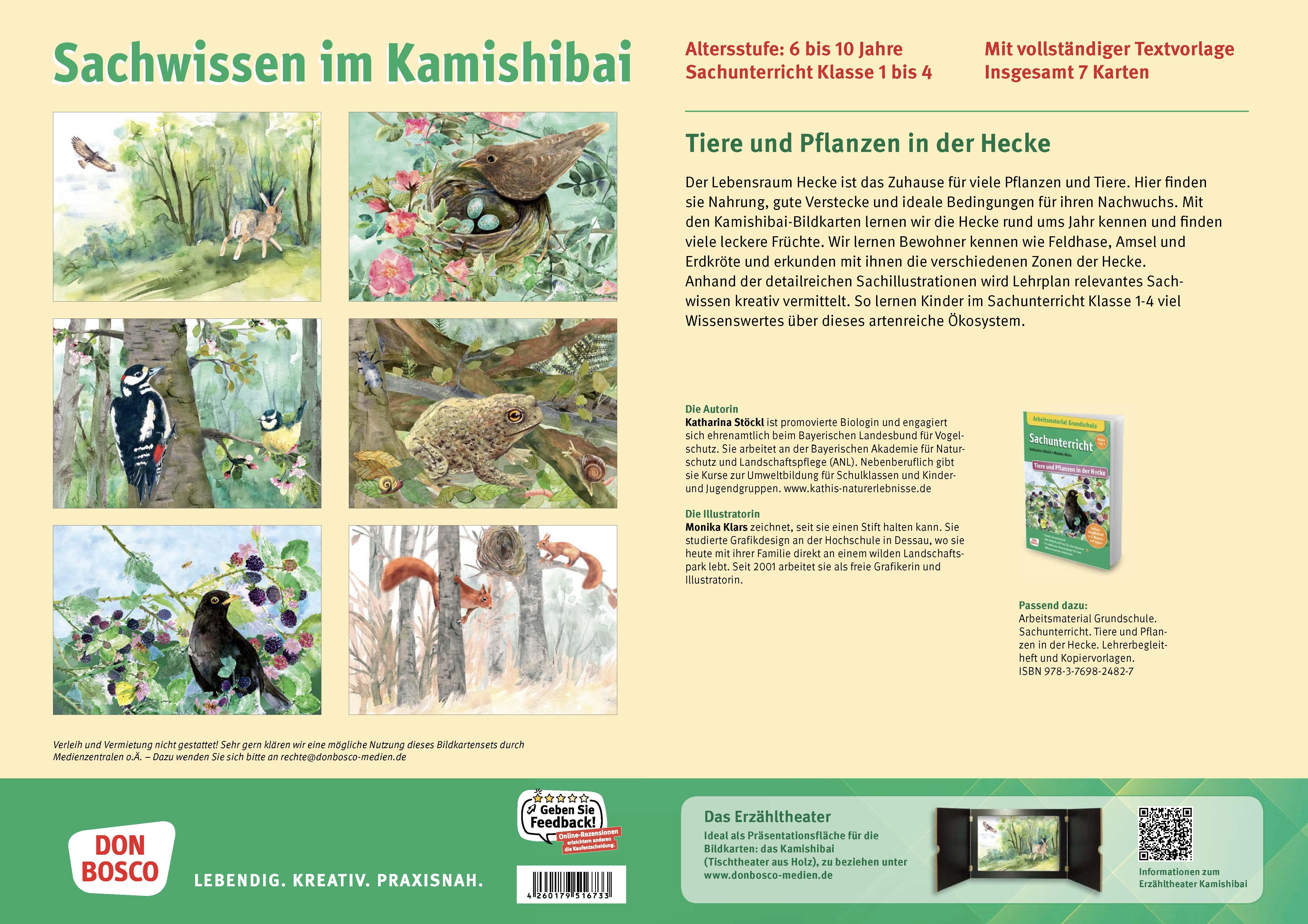 Innenansicht zu Tiere und Pflanzen in der Hecke. eKami.