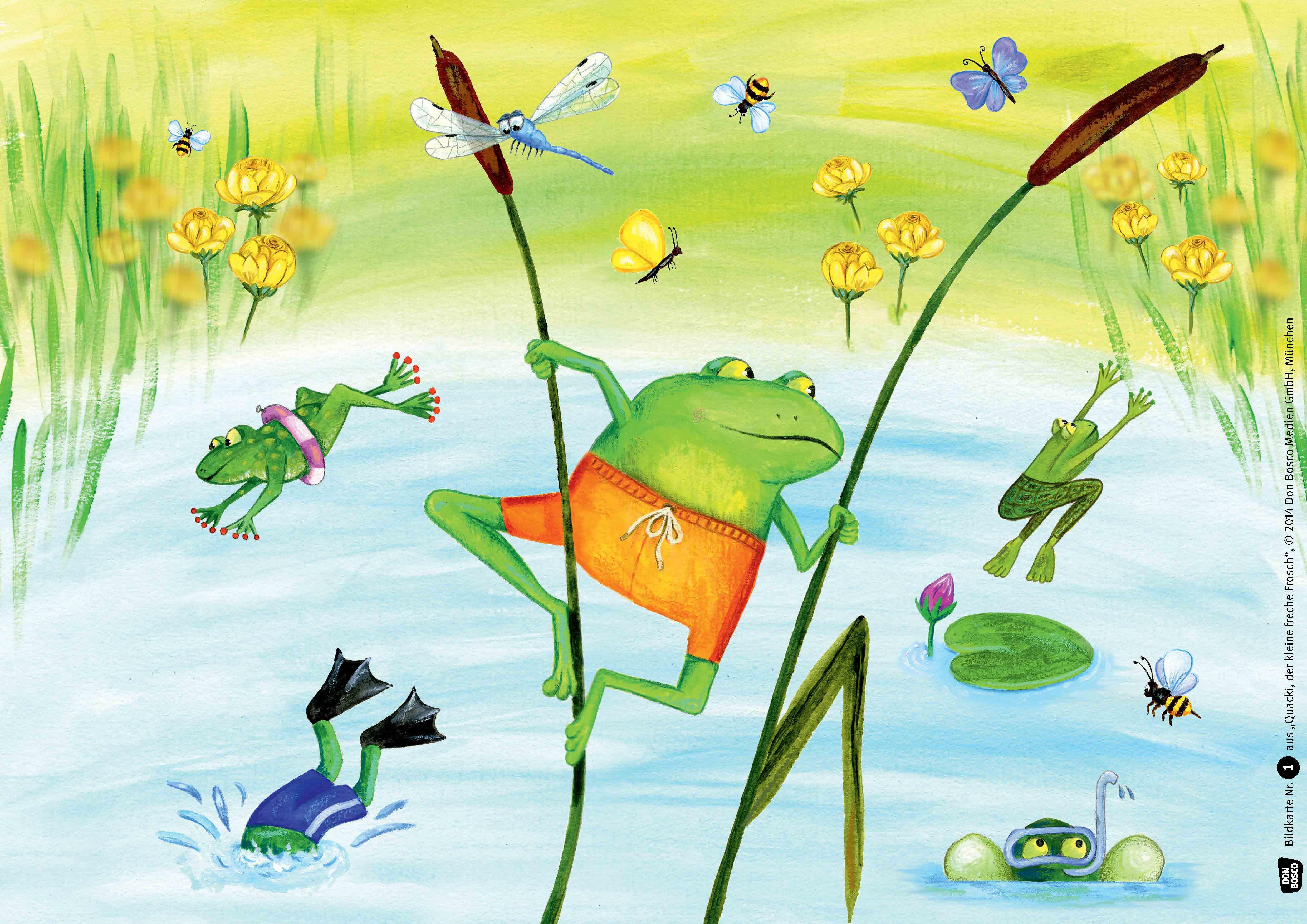 Innenansicht zu Quacki, der kleine freche Frosch. Kamishibai Bildkartenset.