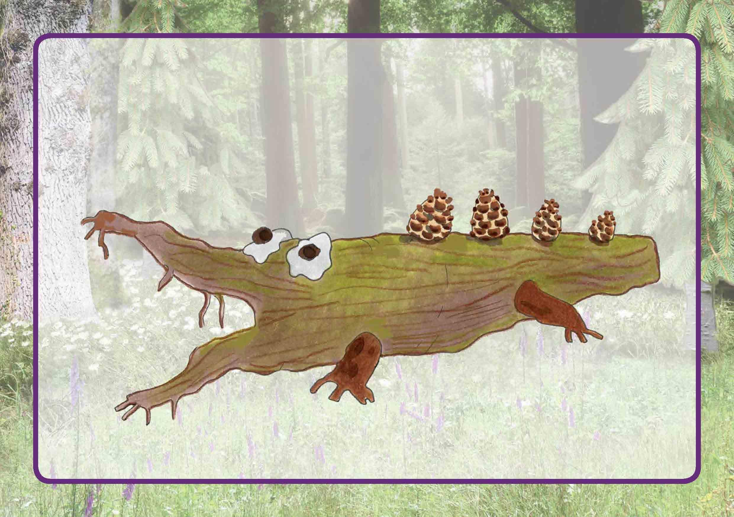 Innenansicht zu Raus in den Wald!