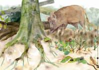 Innenansicht zu Tiere und Pflanzen im Wald. eKami