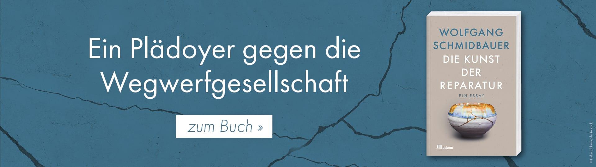 Werbebanner zu Wolfgang Schmidbauers Buch »Die Kunst der Reparatur«