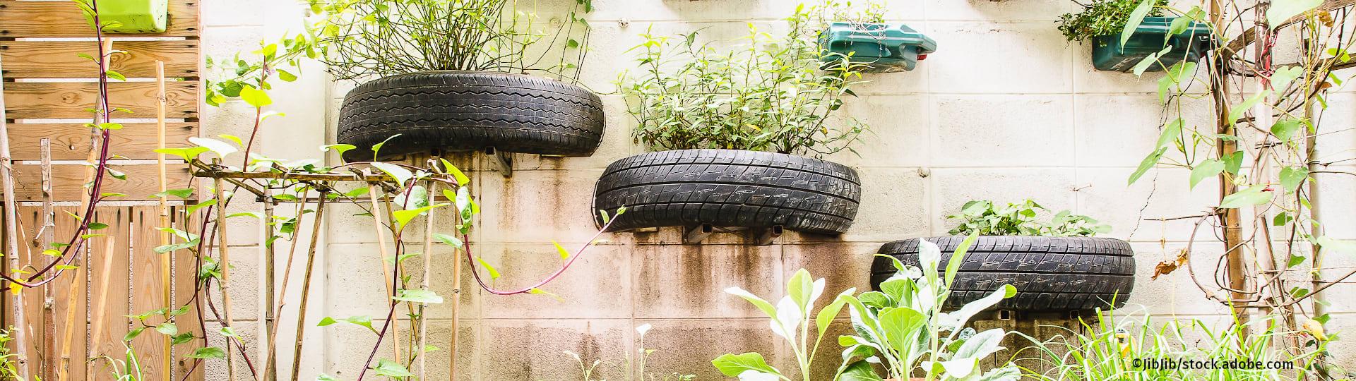 Autoreifen und Benzinkanister als Pflanzenbeete – ein Symbol für Postwachstum