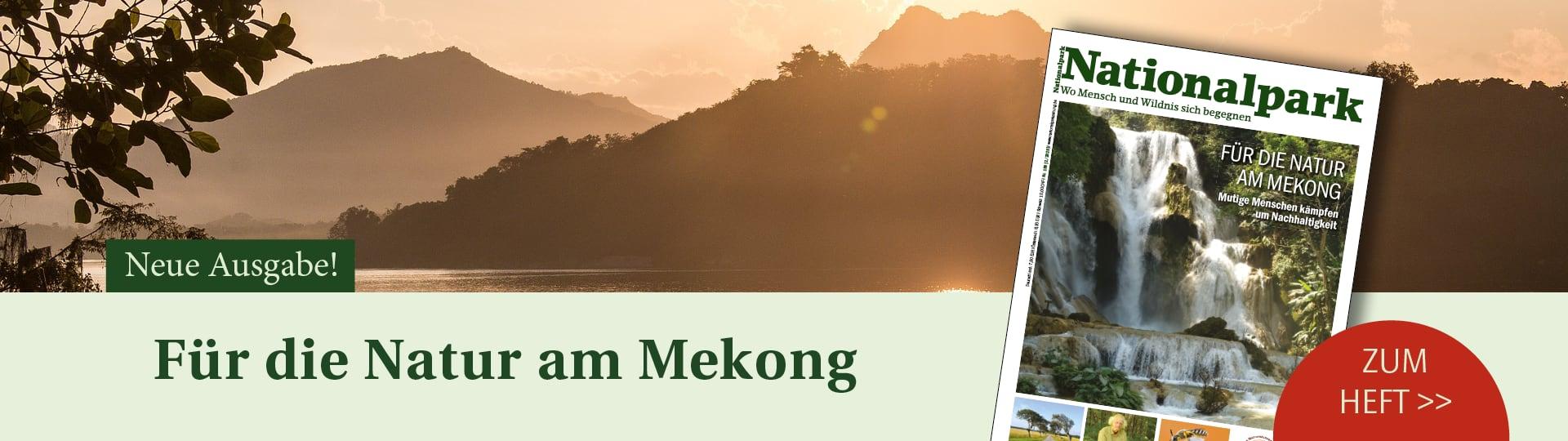 Banner für Ausgabe 2/2020 der Zeitschrift Nationalpark