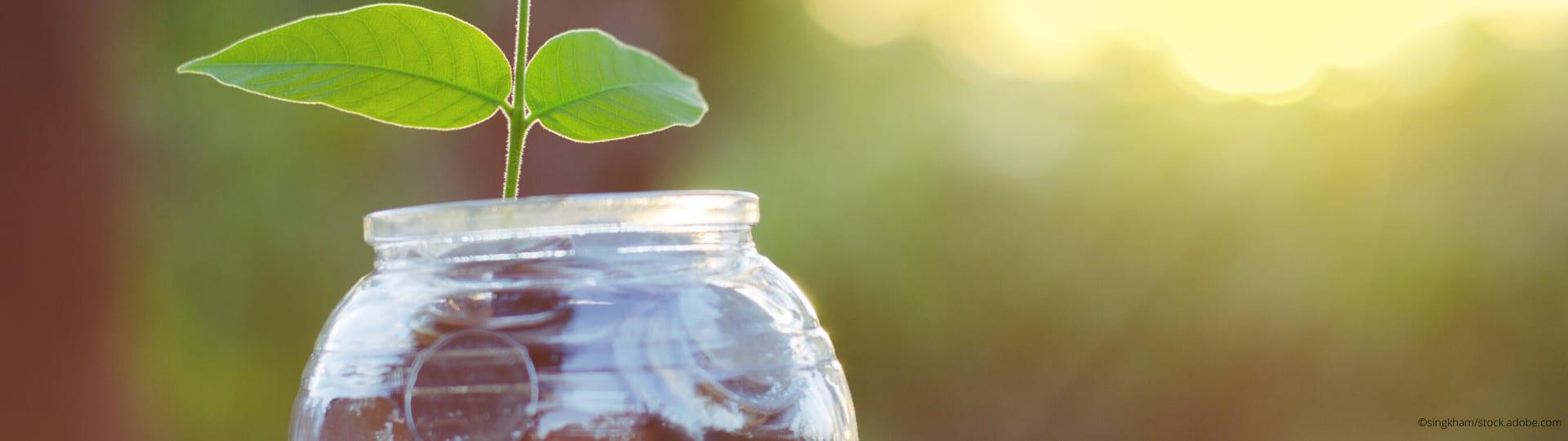 Aus Spendengeldern erwächst Nachhaltigkeit