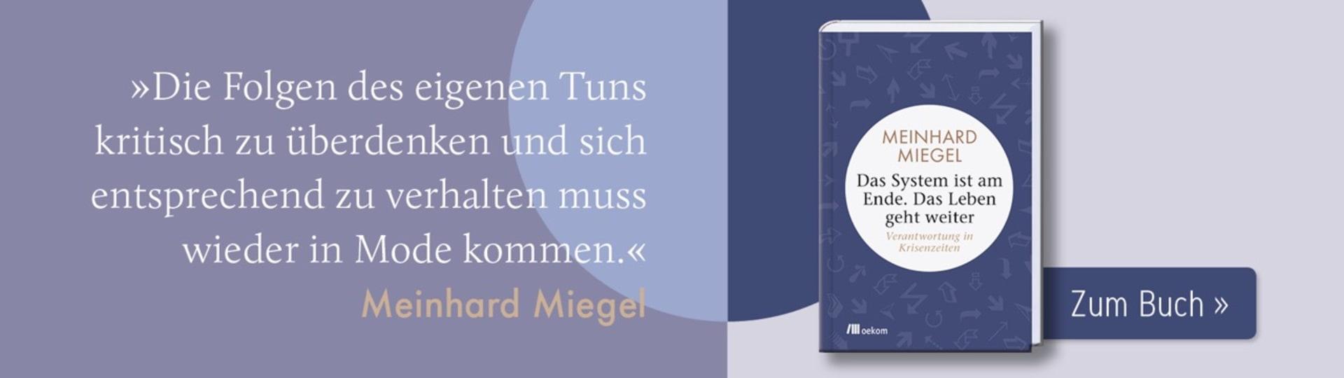 Werbebanner zu Meinhard Miegels Buch »Das System ist am Ende. Das Leben geht weiter«