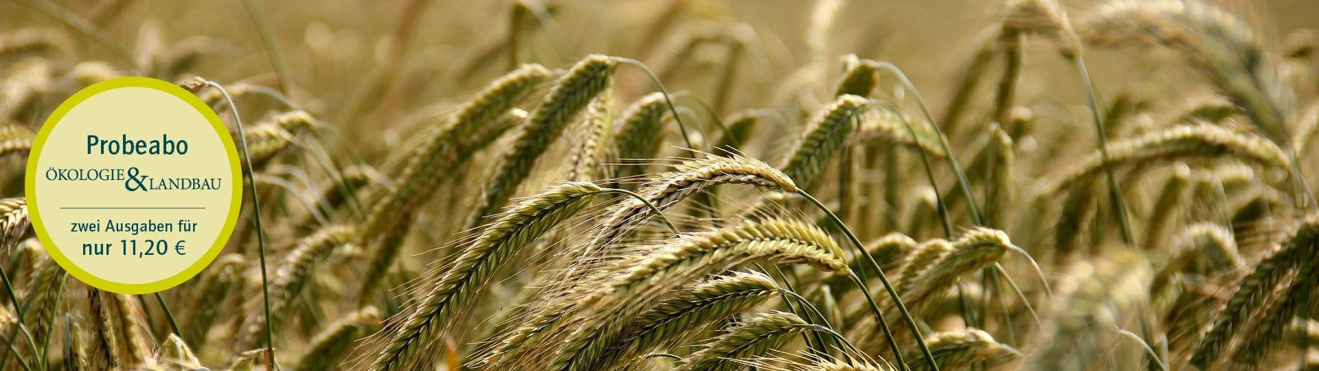 Kostenfreier Versand von Einzelheften der Zeitschrift Ökologie & Landbau