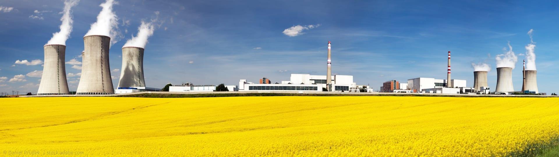 Gelb blühendes Rapsfeld mit Kraftwerk samt rauchenden Schloten im Hintergrund