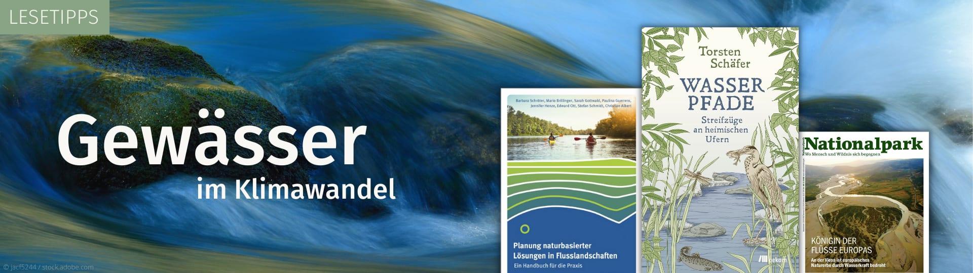 Gewässer im Klimawandel - Lesetipps