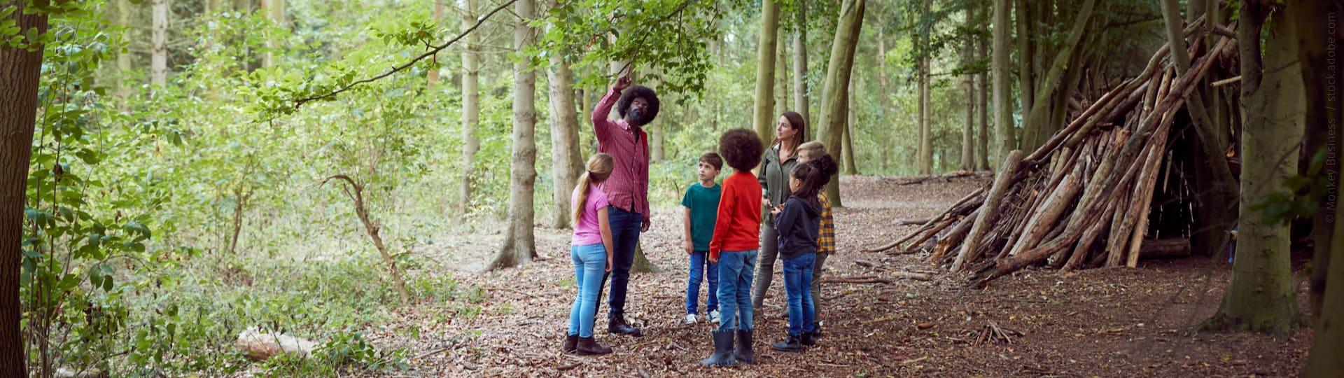 Erwachsene erklären Kindern die Natur im Wald