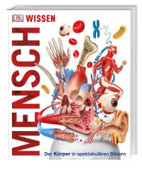Coverbild Wissen - Mensch, 9783831034604