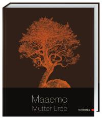 Coverbild Maaemo von Esben Holmboe Bang, 9783985410354