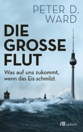 """Cover zu """"Die große Flut"""""""