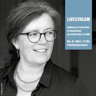 Christina Clemm als Sachverständige im Familienausschuss des Deutschen Bundestags