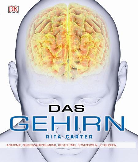 Das Gehirn | DK Verlag