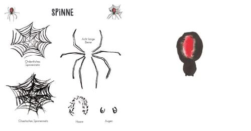 Tiere Zeichnen Für Angsthasen Und Faultiere Knesebeck Verlag