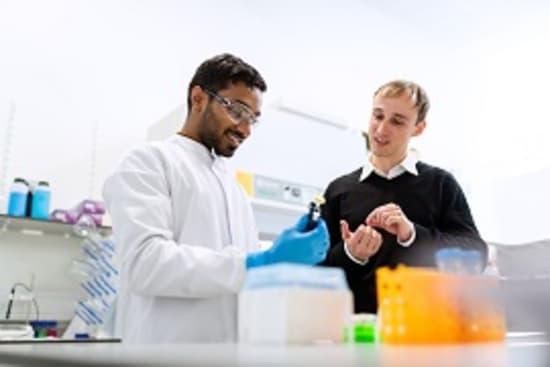 Sieben neue IGF-Projekte zur Lebensmittelforschung