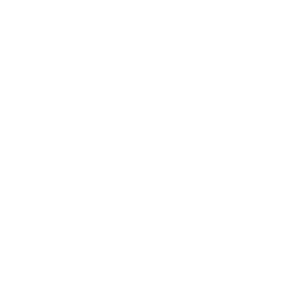 Camp in the City day camps