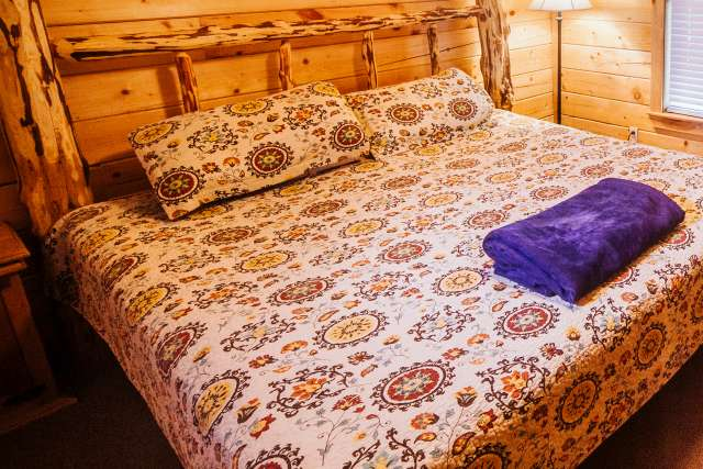 Rustic hotel-style room with queen bed and mini-fridge