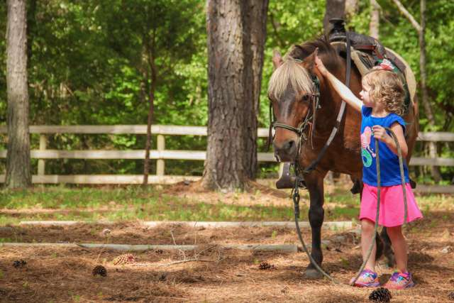 woods-pony-horse-girl-covekids-15Wo04-03-1_jyfafj.jpg