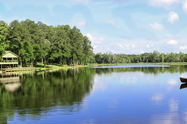 Scenic lake view of the Pine Cove Woods