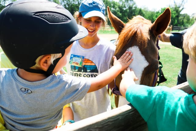 Camper petting horse with wrangler