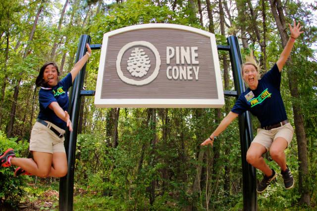 Pine-Coney_upz8qs