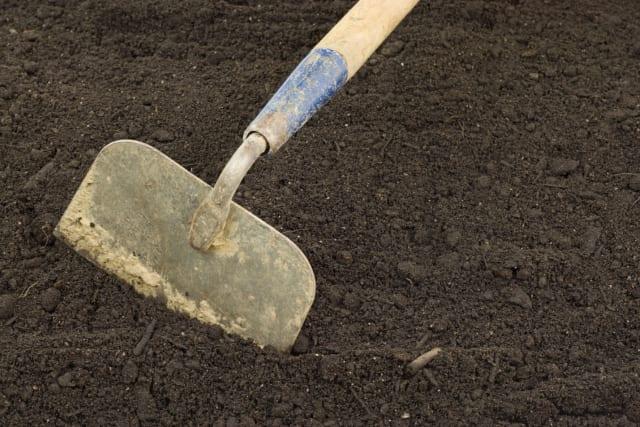 garden hoe in fresh soil