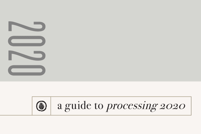 2020 Processing Guide