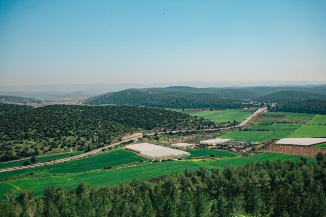 insidethecove%2Fforge_israel_2020_Azekah_Elah_Valley
