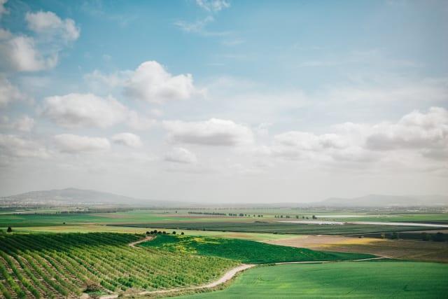 insidethecove%2Fforge_israel_2020_Jezreel_Valley_Megiddo