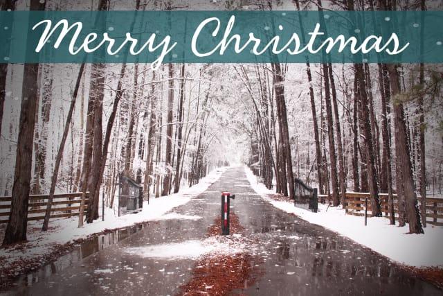 Snow Merry Christmas Card