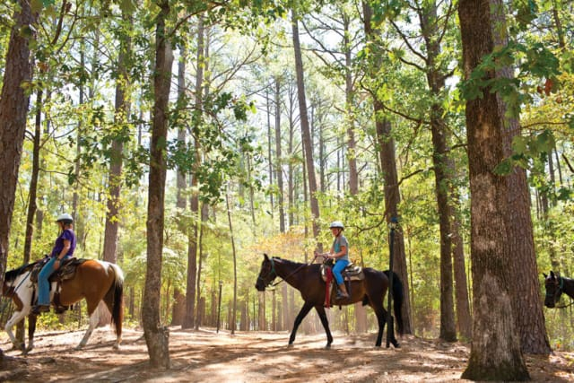 Pine Cove Horse Ministry