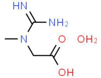 Granulated Creatine Monohydrate