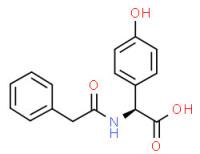 (S)-(4-hydroxyphenyl)(phenylacetamido)acetic acid