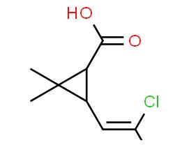 (1S,3R)-3-(2,2-dichlorovinyl)-2,2-dimethylcyclopropanecarboxylic acid