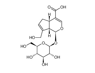 (1S,4aS,7aS)-7-(hydroxymethyl)-1-[(2S,3R,4S,5S,6R)-3,4,5-trihydroxy-6-(hydroxymethyl)oxan-2-yl]oxy-1,4a,5,7a-tetrahydrocyclopenta[c]pyran-4-carboxylic acid
